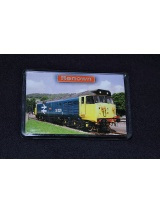 50029 Renown fridge magnet
