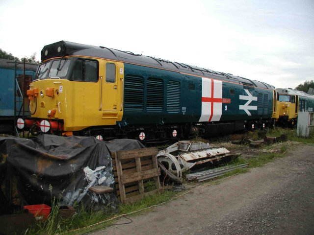 50029 in World Cup livery