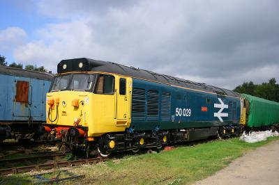 50029 at Rowsley 16th September 2007